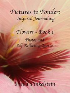 Front cover of Picture to Ponder: Inspired Journaling - Flowers Book 1